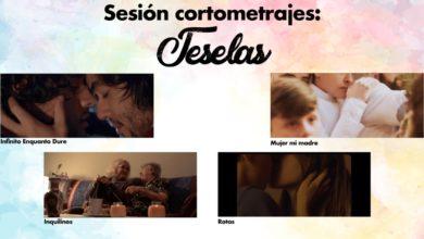 Photo of Teselas